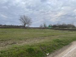 Spre vinzare teren agricol Ialoveni